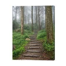 Imagine Creating a New Path for Your Success
